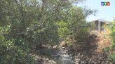 Tài nguyên môi trường 14-3-2020