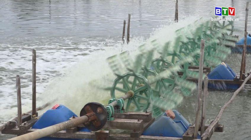 Kinh tế thủy sản 22-6-2020
