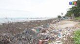 Tài nguyên môi trường 03-01-2021