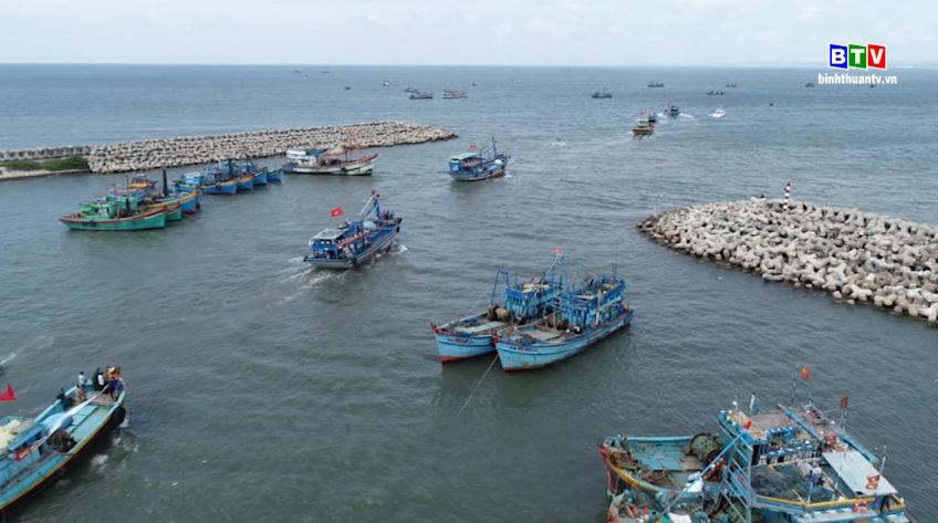 Ngành thủy sản Bình Thuận nỗ lực vượt khó