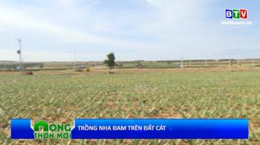 Bình Thuận nông thôn mới 21.02.2021