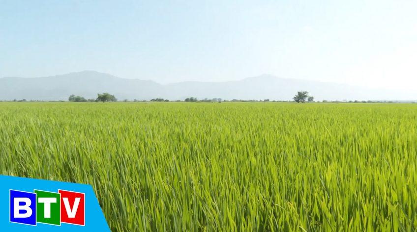Bình Thuận nông thôn mới | 9.05.2021