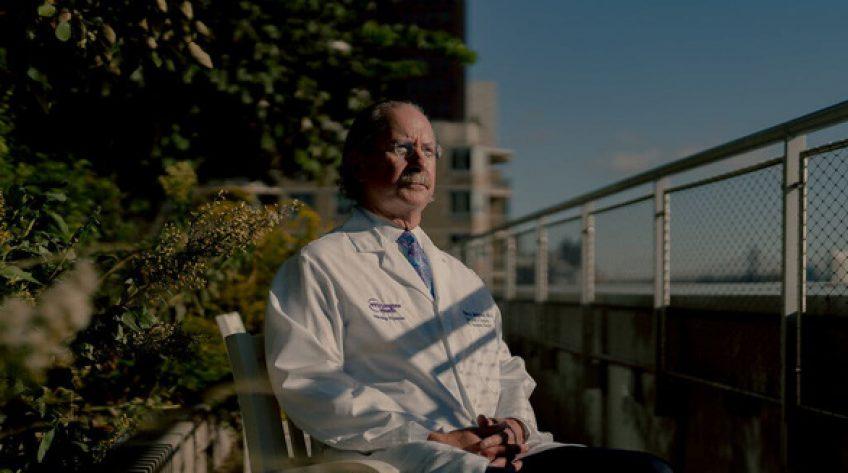 Ghép thành công thận heo cho người: Đột phá khoa học sẽ cứu sống nhiều người?