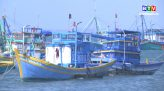 Kinh Tế thủy sản 2-2-2021